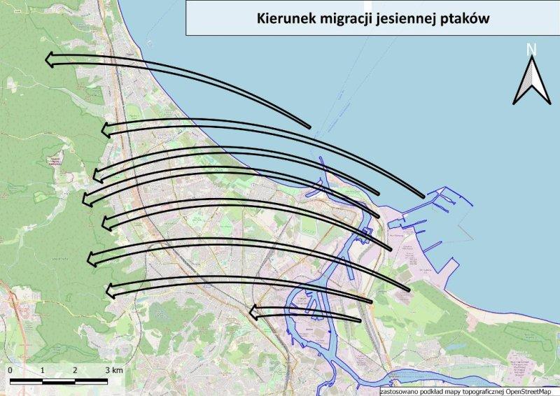 Kierunek migracji jesiennej ptaków.