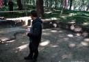 Władze miasta nie wiedzą, że znajduje się ludzkie szczątki