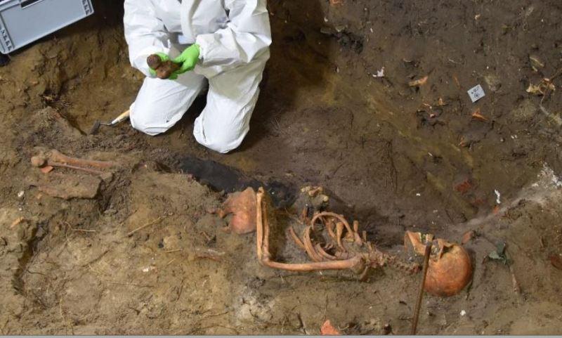 Szczątki znalezione na Westerplatte