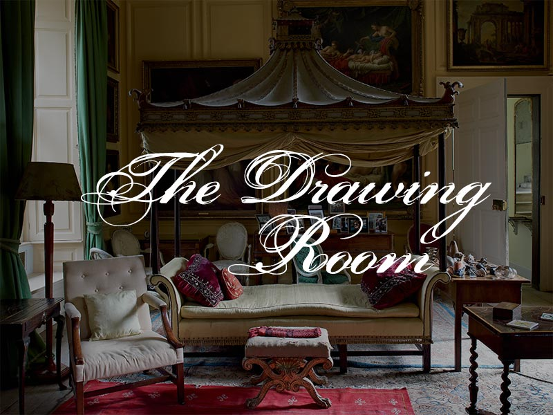 The Drawing Room Evolution Or Extinction