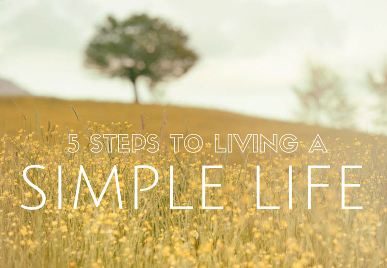 living a simple life main image