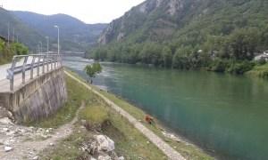 Dušče (Višegrad), Drina