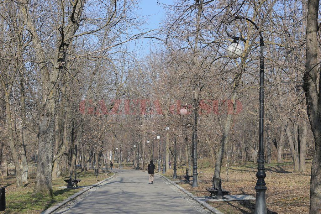 """Un bărbat de 63 de ani a fost găsit, sâmbătă dimineață, spânzurat în Parcul """"Romanescu"""" din municipiul Craiova"""