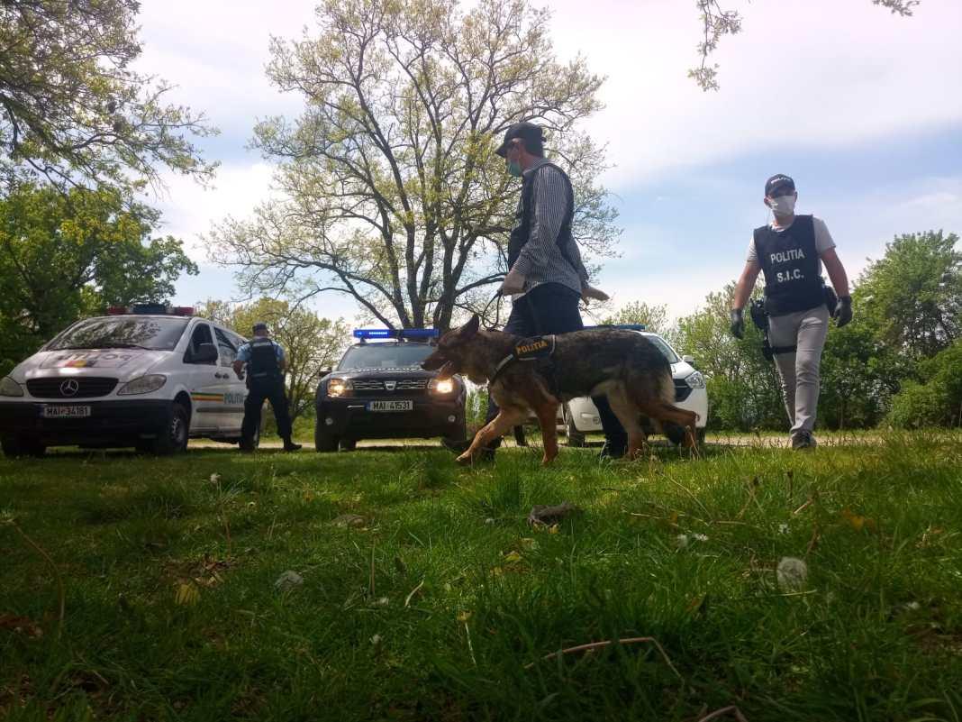 Poliția, în patrulare în zonele de picnic