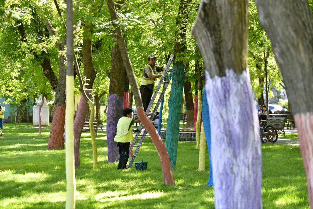 RAADPFL Craiova a colorat copacii din Parcul Puskin
