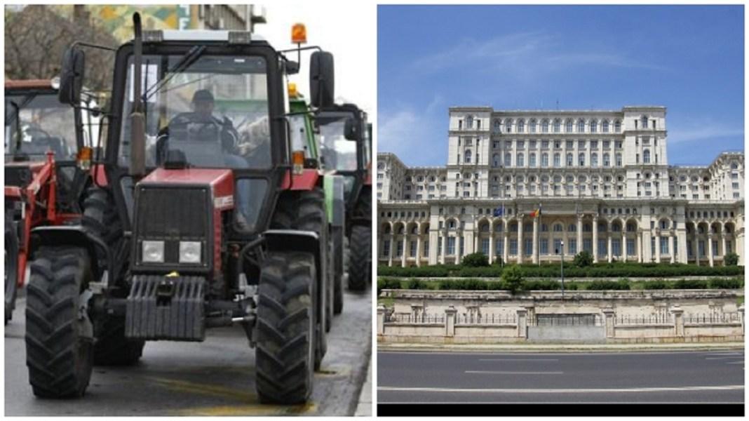 Acest protest este al tuturor fermierilor români, fie că sunt din sectorul vegetal, fie că sunt din zootehni