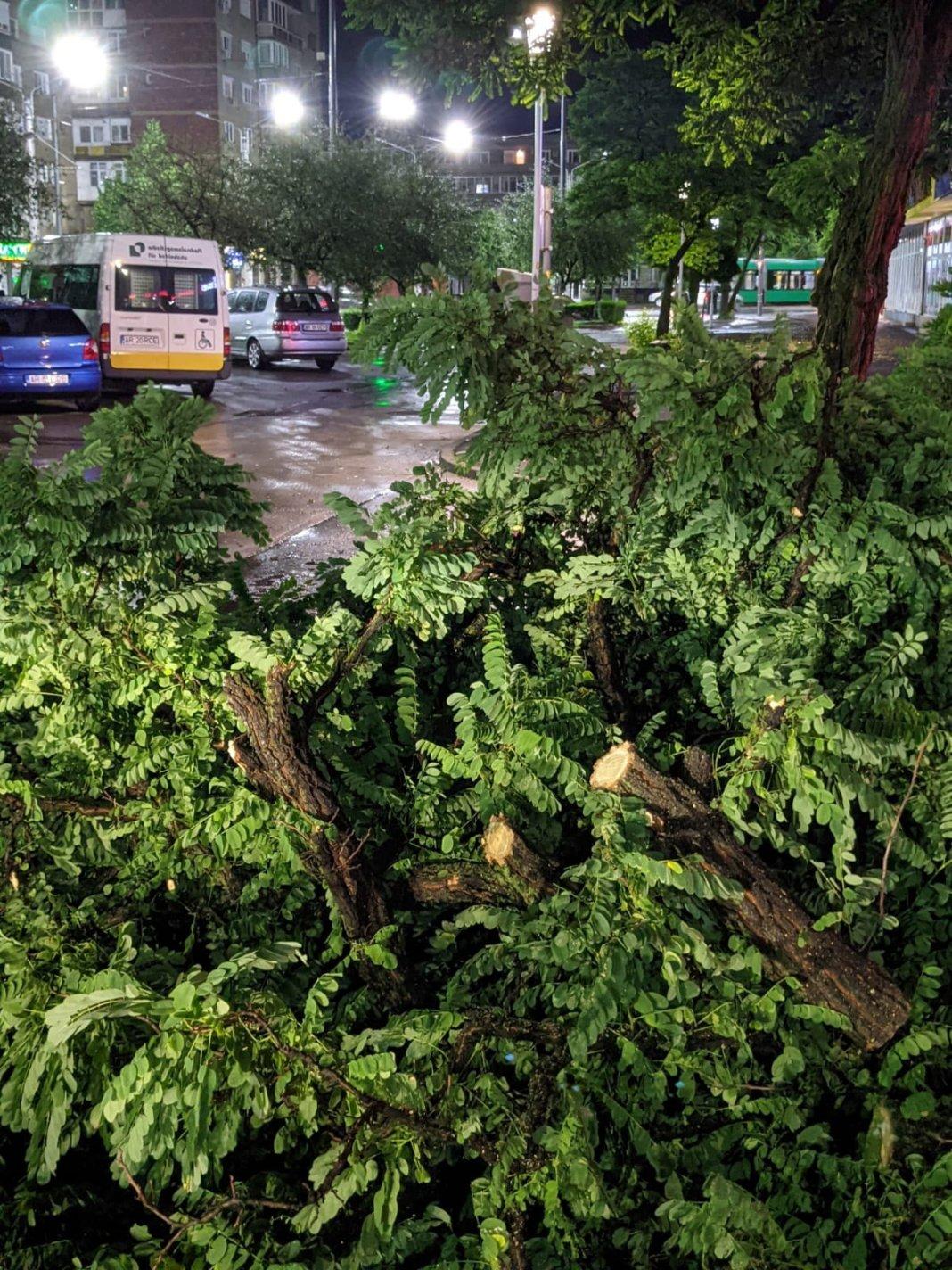 Furtuna de vineri seară a făcut mai multe pagube în municipiul Arad (Foto: Facebook Primăria Municipiului Arad)