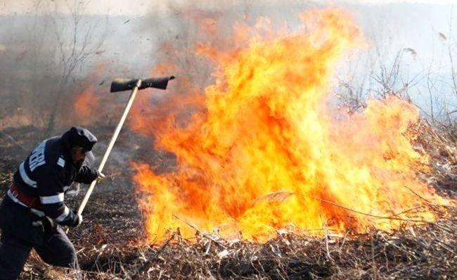 103 incendii de vegetație în România, într-o singură zi