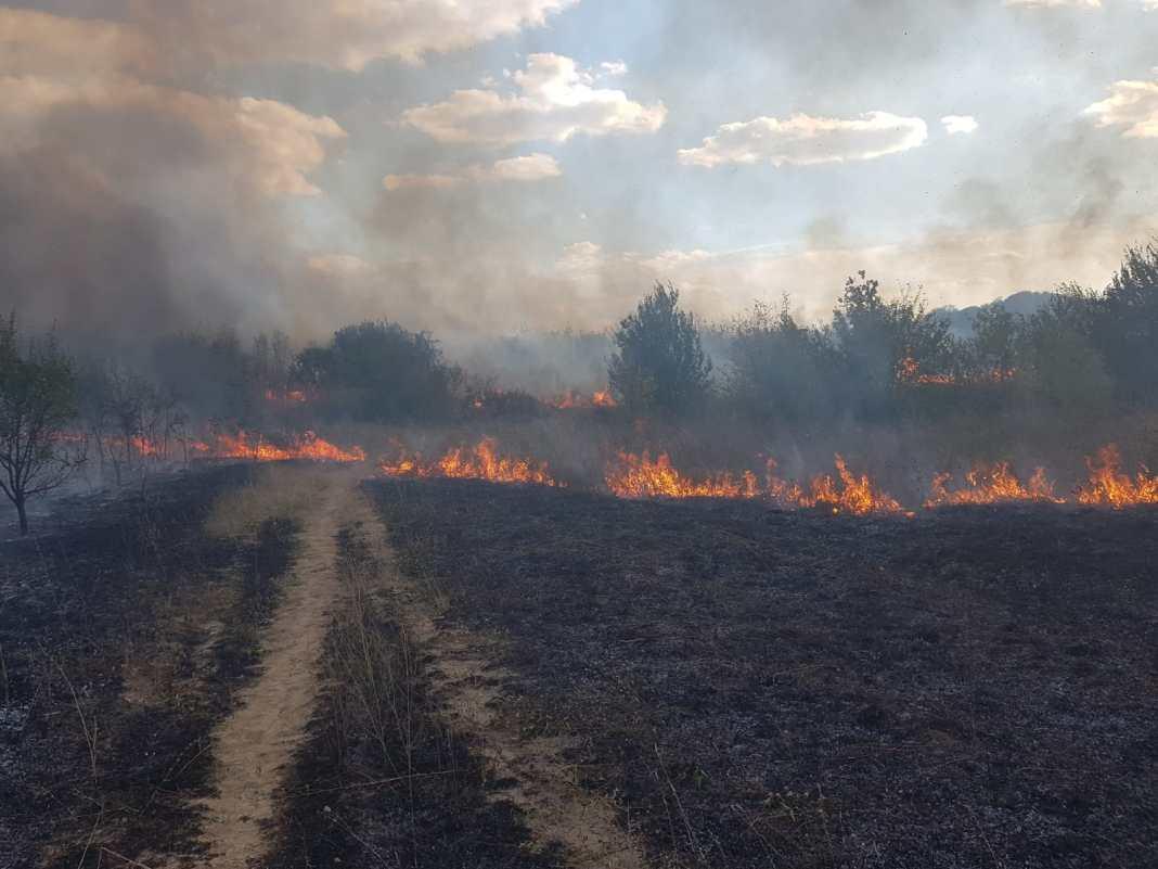 Incendiu la Hipodromul din Craiova