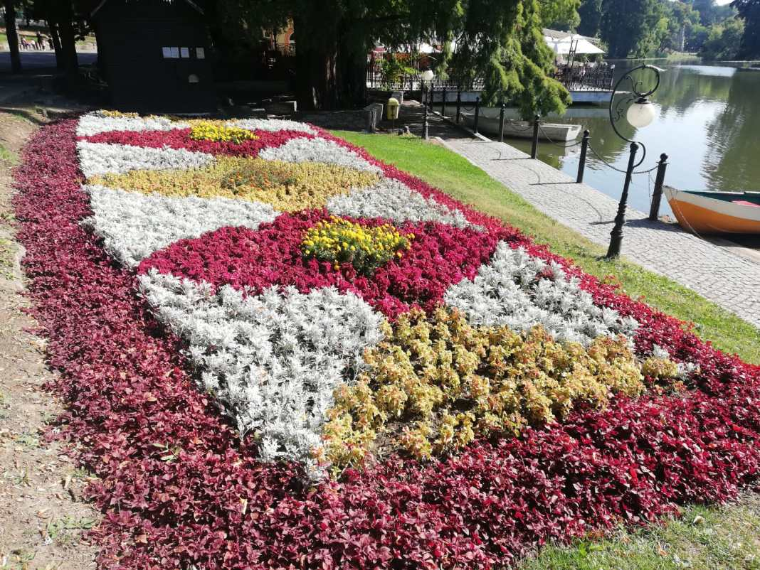 """Cum a înflorit la Craiova afacerea """"iarba colorată"""". Flori plantate în Parcul """"Nicolae Romanescu"""" din Craiova."""