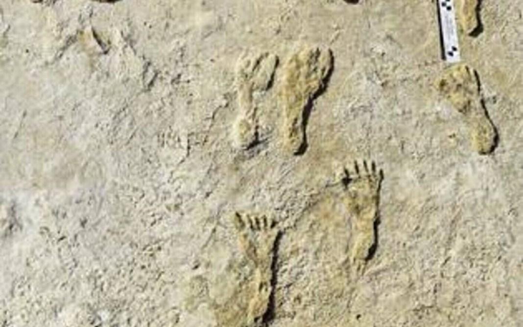 Urme de tălpi cu o vechime de 23.000 de ani rescriu istoria prezenţei umane în America