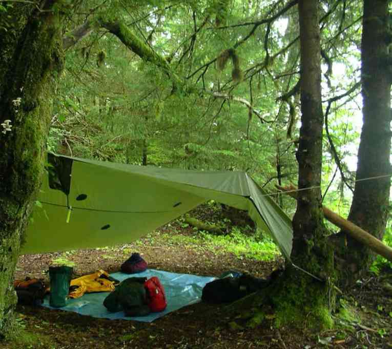 Best Camping Tarps For Backpacking