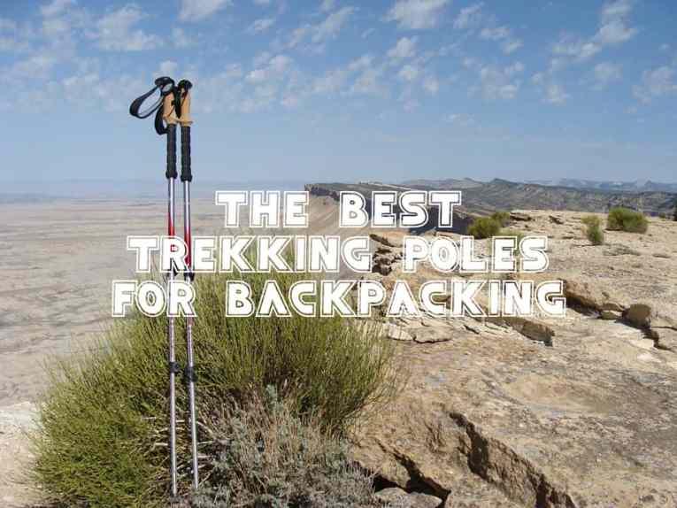 best trekking poles for backpacking