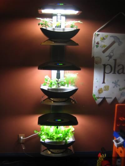 AeroGarden Pro 100 - Indoor Gardening Made Simple - Review
