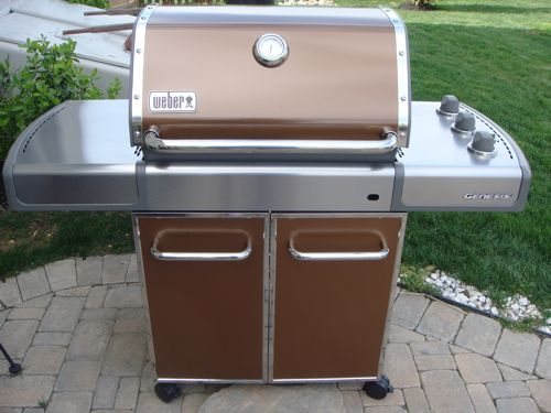 Review - Weber EP-310