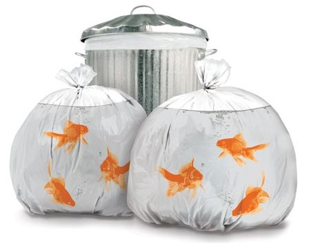 goldfish trash bags.jpg