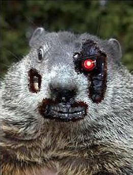 PETA Proposes 'Robotic Groundhog' for Celebration