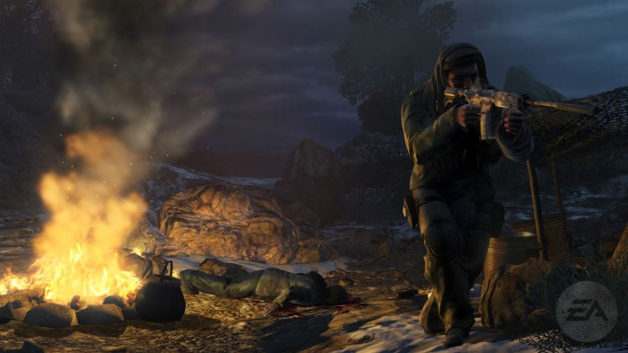 PC/XBOX360/PS3 Game Review: 'Meh'dal of Honor