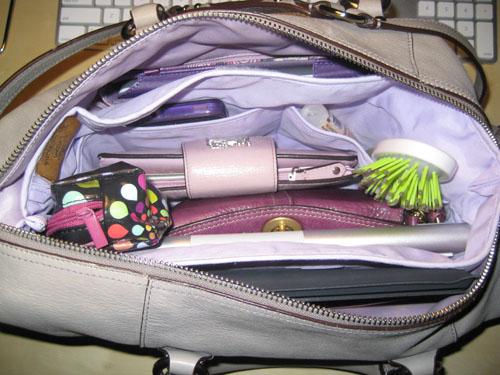 Review: Purse to Go Bag Organizer