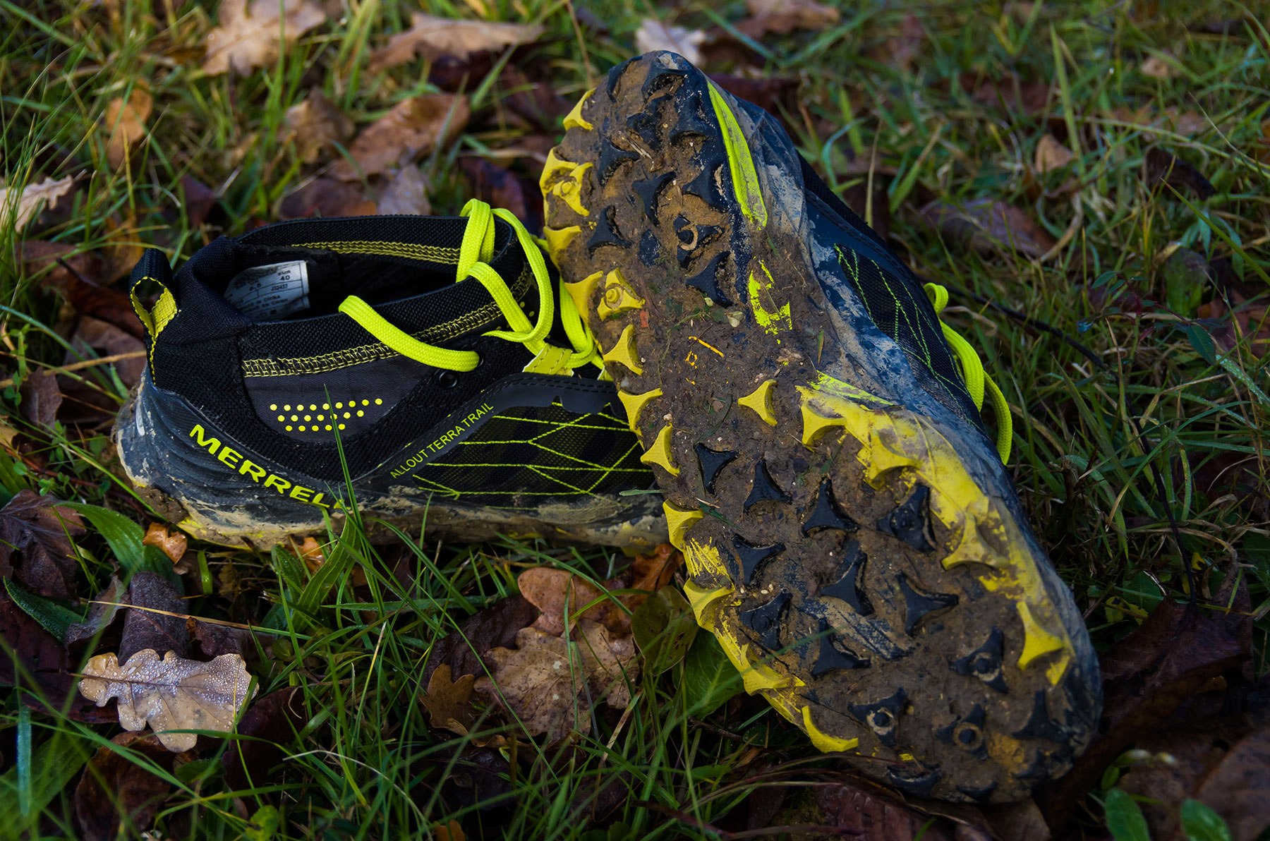 Shoe Review  Merrell All Out Terra Trail b0bc2543d0c6
