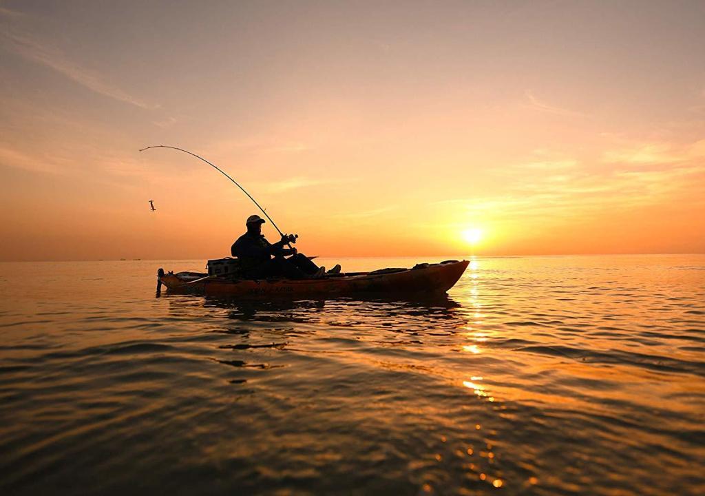 Ocean Prowler 13 Angler