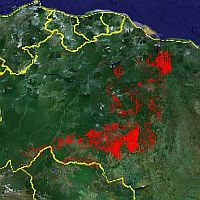 Tropical forest deforestation in Google Earth