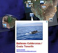 Panoramio Photos in Google Earth