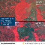 DigitalGlobe helping to track forest fires