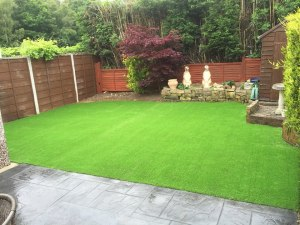 new laid grass