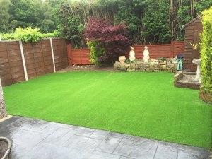 new laid grass