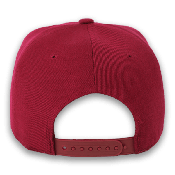 logo,gear up poet,poet the puppy,dog fashion,hats,flat bill,snap back,