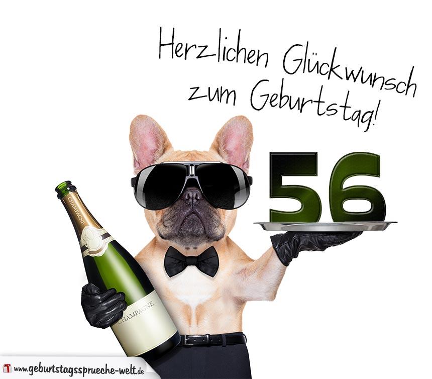 Katja Berlin Zum Geburtstag Heyne Verlag Taschenbuch