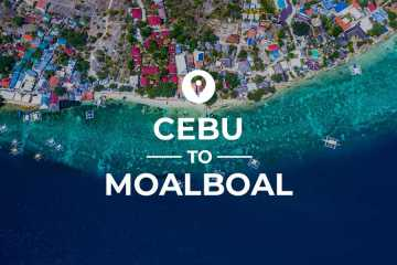 Cebu to Moalboal cover image