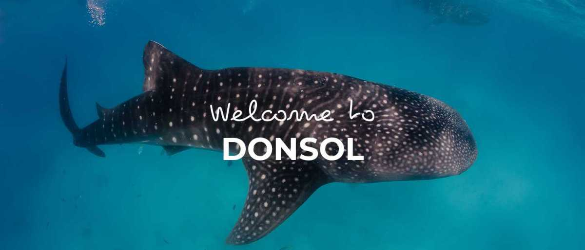 Donsol cover image
