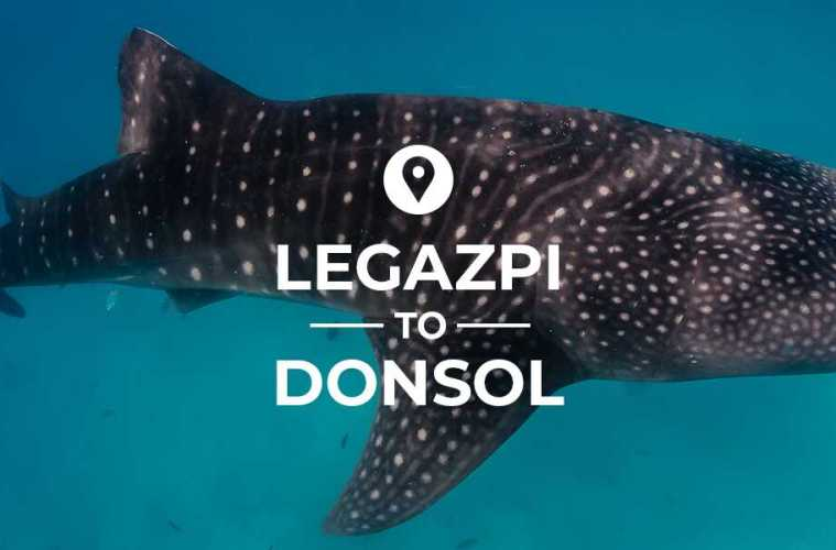 Legazpi to Donsol cover image