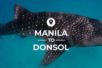 Manila to Donsol cover image