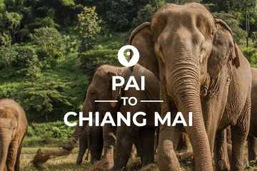 Pai to Chiang Mai cover image