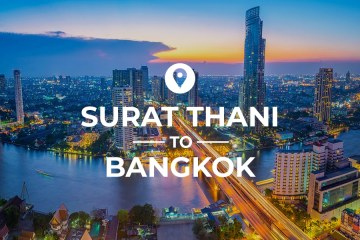Surat Thani to Bangkok cover image