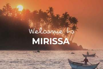 Things-to-do-Mirissa