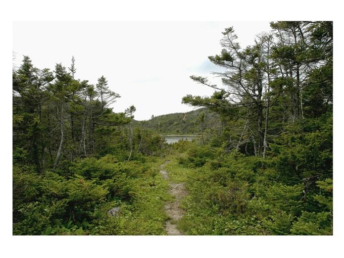 Randonnée de la St. Jean Baptiste, Cap St. George à Mainland NL (51.44cm x 126.7cm)