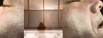 Eyes - Curtained Window, Shade/Shadow