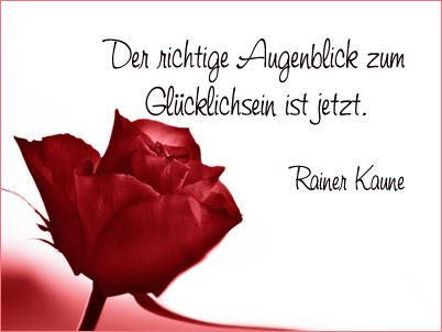 Rote Rosenblute