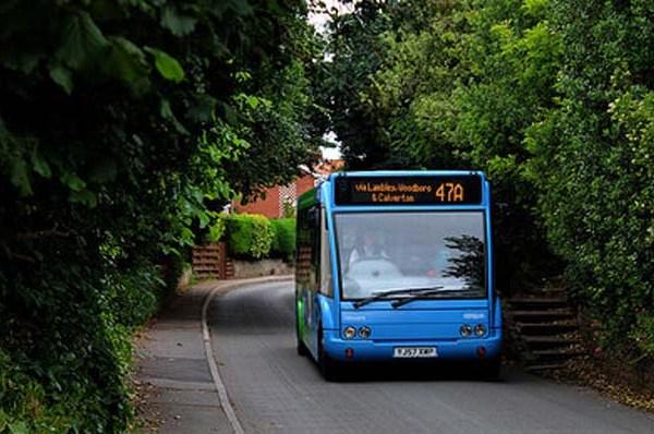 Skyblue-bus