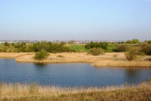 Netherfield-Lagoons