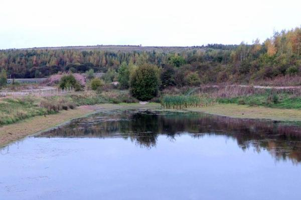 Gedling_Country_Park