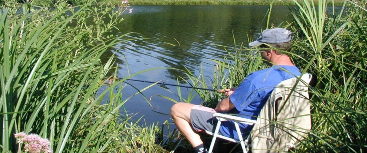 Coarse_fishing