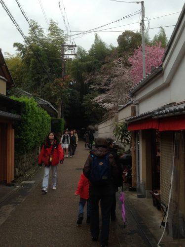 L'entrée discrète de la bambouseraie de Sagano