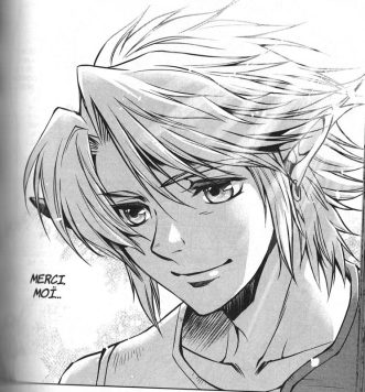 Link, tiré du manga de Twilight princess