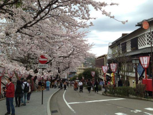 Le marché de Kanasawa avec ses cerisier en fleur et ses stands de nourriture à l'emportée