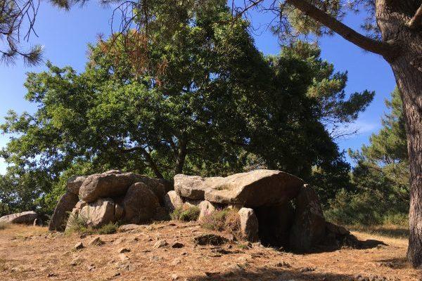 Mégalithes de Mané Braz 6